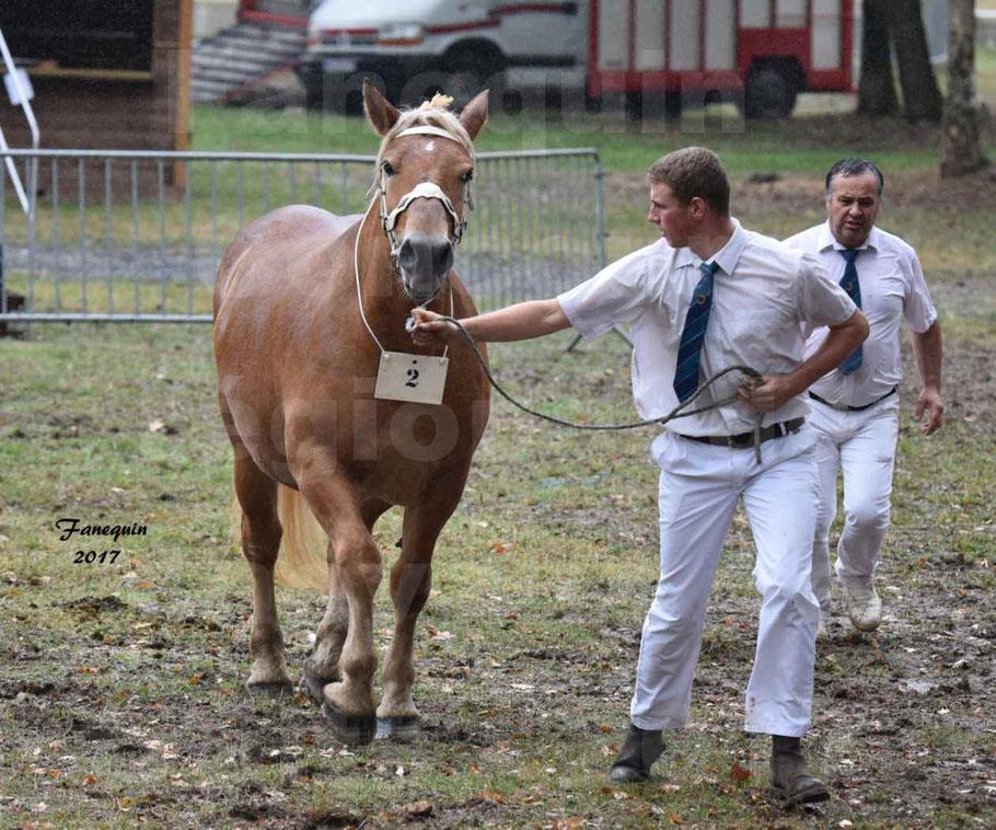 Concours Régional de chevaux de traits en 2017 - Trait COMTOIS - FLOIRIDE 2