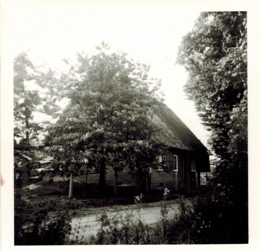 Haus Nr. 19 Am Vierberg (Bild von Lotti Bräker)