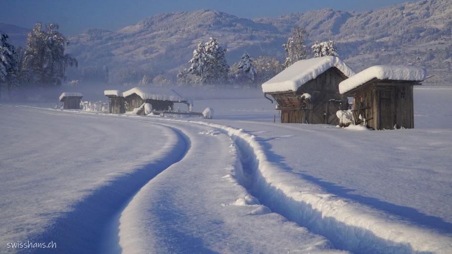 Verschneite Wiese mit Spuren und Schrebergartenhäuschen bei Marbach im Rheintal