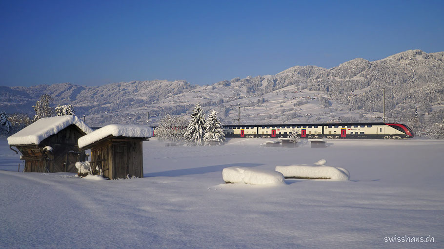Rheintaler Winterlandschaft mit Zug der SBB bei Marbach. Schrebergartenhäuschen im Vordergrund