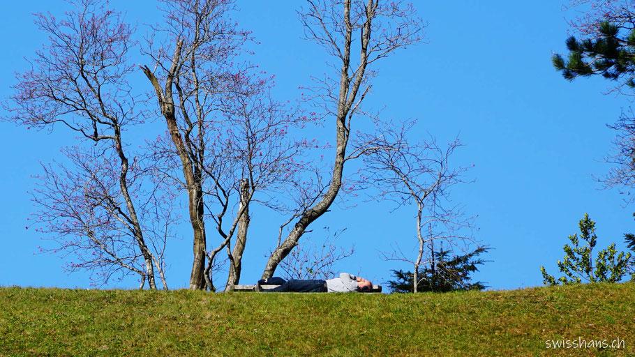 Person liegt auf einer Bank unter den Bäumen auf dem St. Anton