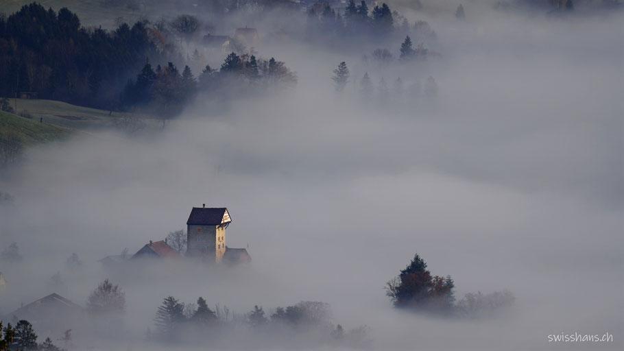 Nebelmeer im Rheintal mit der Burg Neu Altstätten