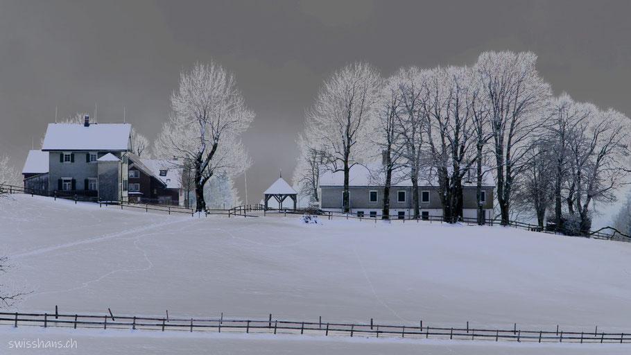 Winterlandschaft mit Bäumen beim Ferienheim Schwäbrig bei Gais