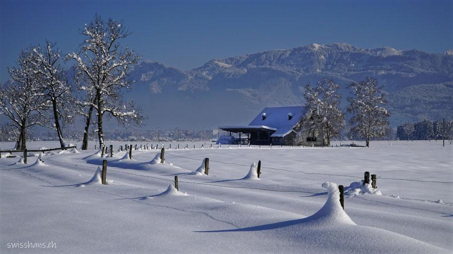 Stall mit verschneitem Weg in der Winterlandschaft des Rheintals