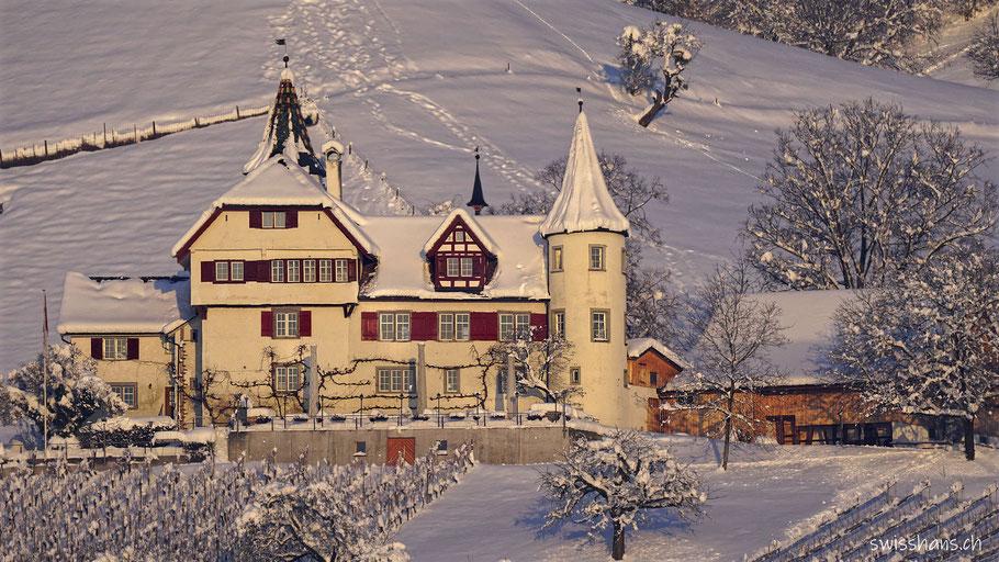 Schloss Weinstein Marbach mit Rebberg im Winter mit Schnee