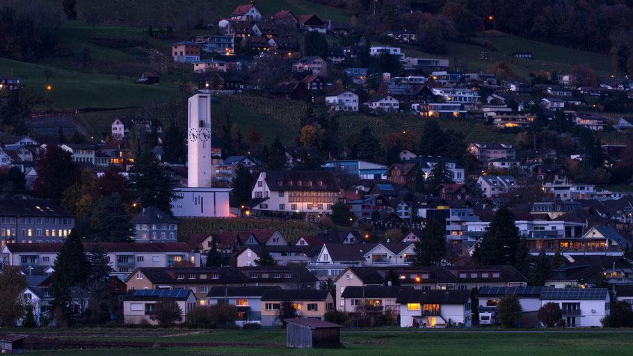 Blick auf das Dorf Rebstein im Rheintal mit Wald im Vordergrund