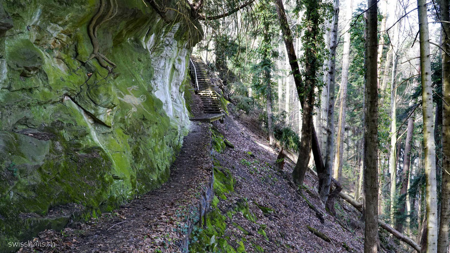 Wanderweg auf dem Rosenberg bei Berneck