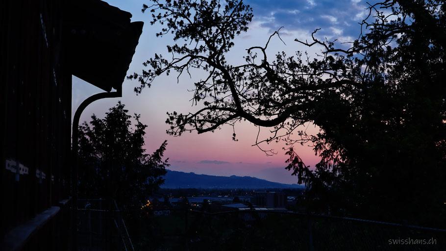 Blick auf das Rheintal mit Morgenstimmung. Gebäude und Baum im Vordergrund