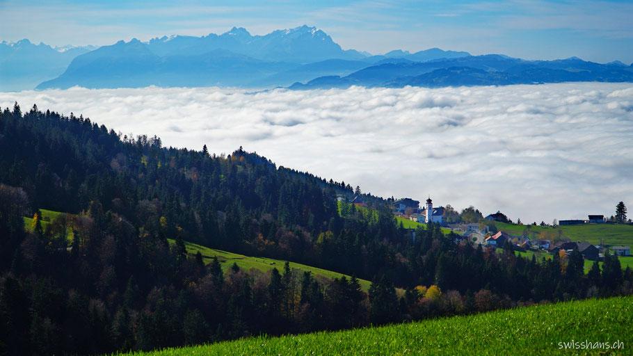 Nebelmeer bei Bregenz mit den Bergen Hoher Kasten und Säntis im Hintergrund