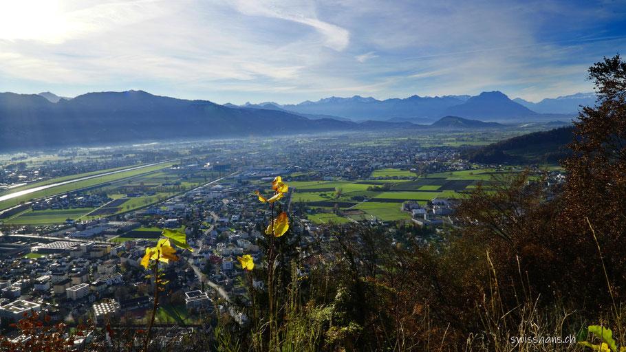 Rheintal mit grünen Wiesen und Herbstlaub und Österreicher Bergen