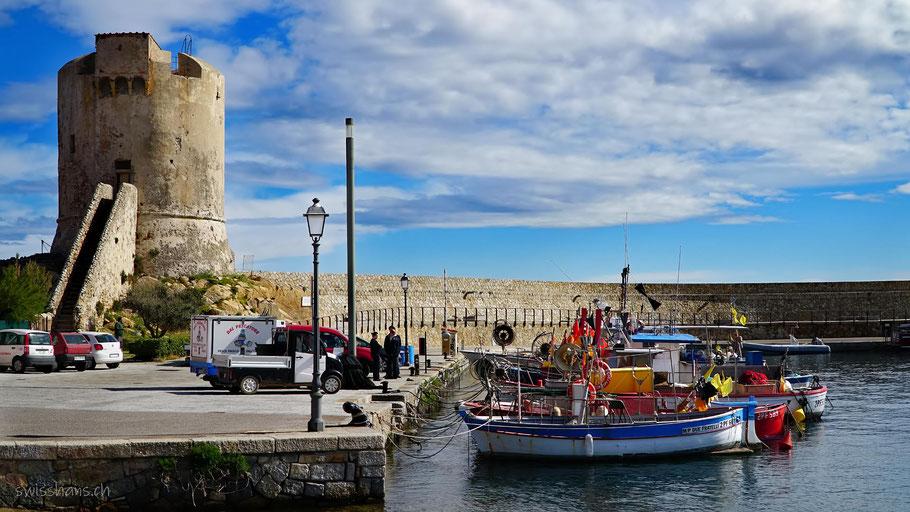 Boote im Hafen auf der Insel Elba mit Leuchtturm