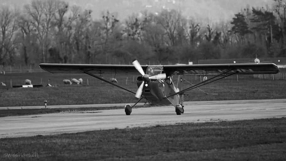 Flugzeug landet auf der Piste beim Flugplatz Altenrhein im Rheintal