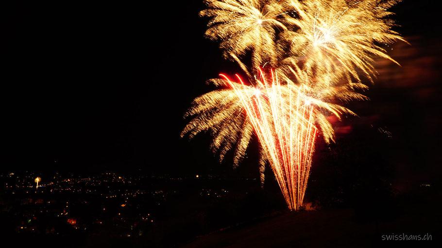 Rheintal bei Nacht mit Feuerwerk
