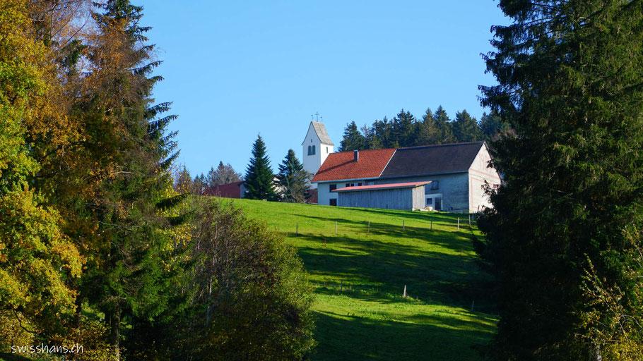 Wiese mit Wald vor dem Kirchturm und einem Bauernhaus