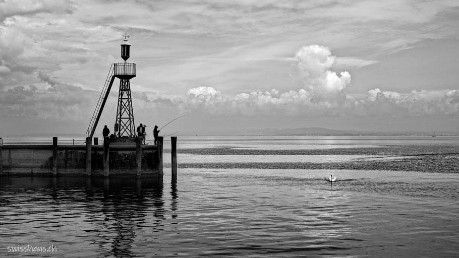 Fischer im Hafen von Rorschach am Bodensee