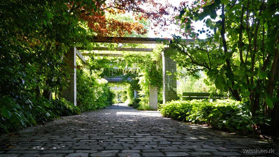 Galerieweg im Botanischen Garten St.Gallen