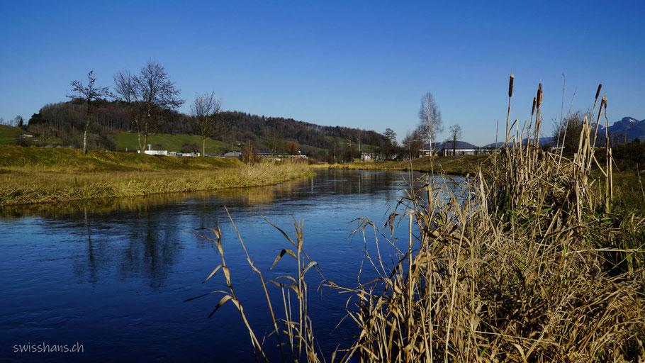 Rheintaler Binnenkanal, Fluss mit verwachsenem Ufer
