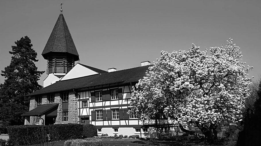 Katholische Kirche Heerbrugg mit Riegelhaus und blühendem Busch