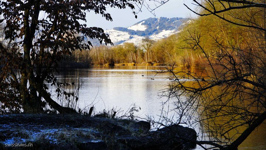 Flusslandschaft mit herbstlich gefärbten Bäumen und Schneebergen im Hintergrund