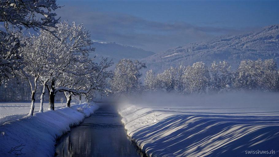 Rheintaler Binnenkanal mit verschneiten Wiesen und Bäumen