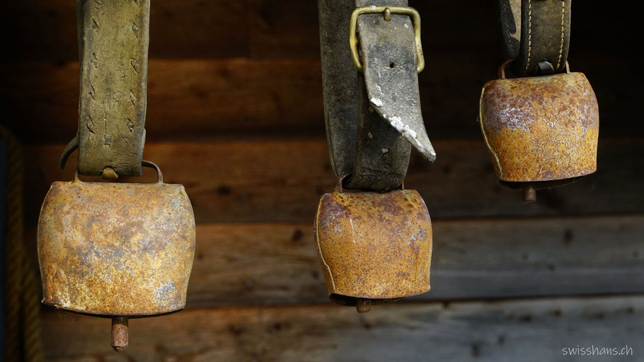 Drei Schellen mit Lederriemen vor einer Holzwand