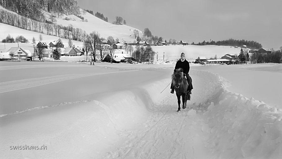 Berittenes Pferd auf einem verschneiten Weg in der Winterlandschaft von Gais