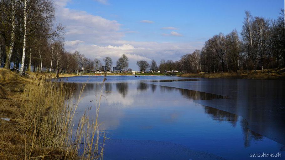 Baggersee Kriessern mit Schilf und Birken und schönen Wolken
