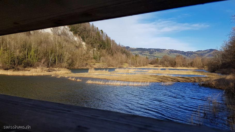 Beobachtungssteg beim Naturschutzgebiet Wichenstein Oberriet