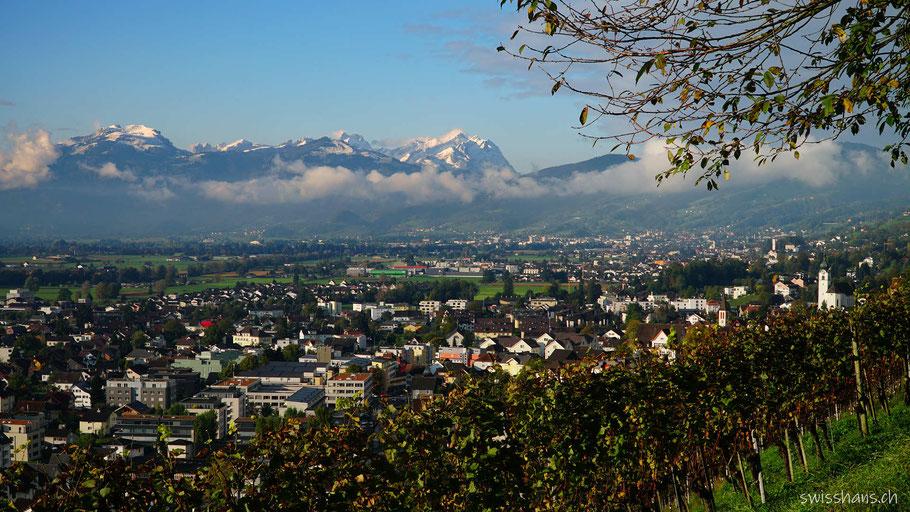 Aussicht auf das Rheintal mit Reben, dem Weindorf Balgach mit den verschneiten Bergen Hoher Kasten und Säntis im Hintergrund