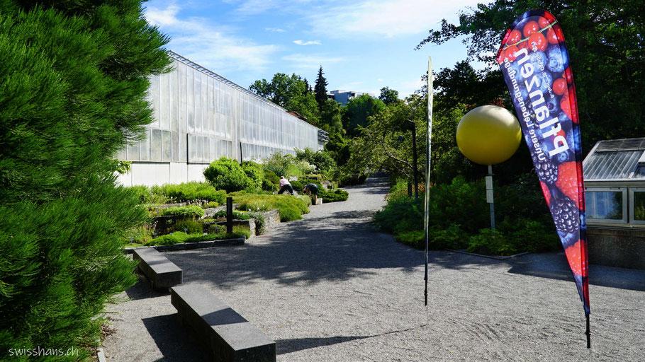 Eingangsbereich Botanischer Garten St.Gallen mit Sitzbänken und Sonne vom Planetenweg