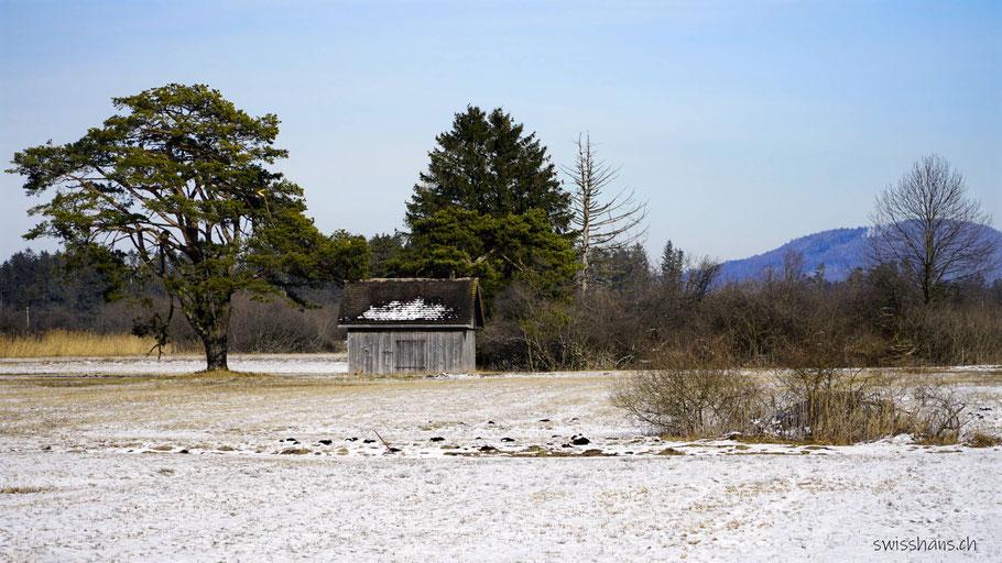 Ruggeller Rietlandschaft mit Streuewiesen, Hütten und Bäumen