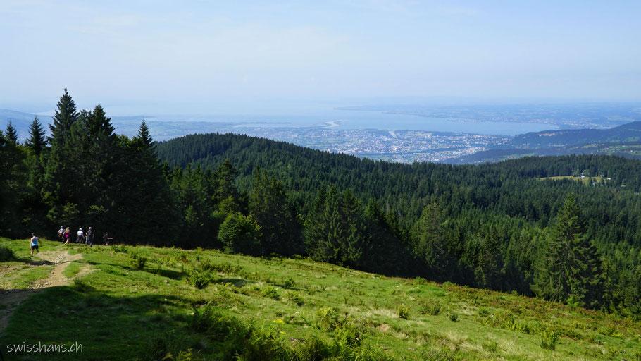 """Aussicht auf den Bodensee beim Aussichtpunkt """"Am Lank"""" beim Bödele."""