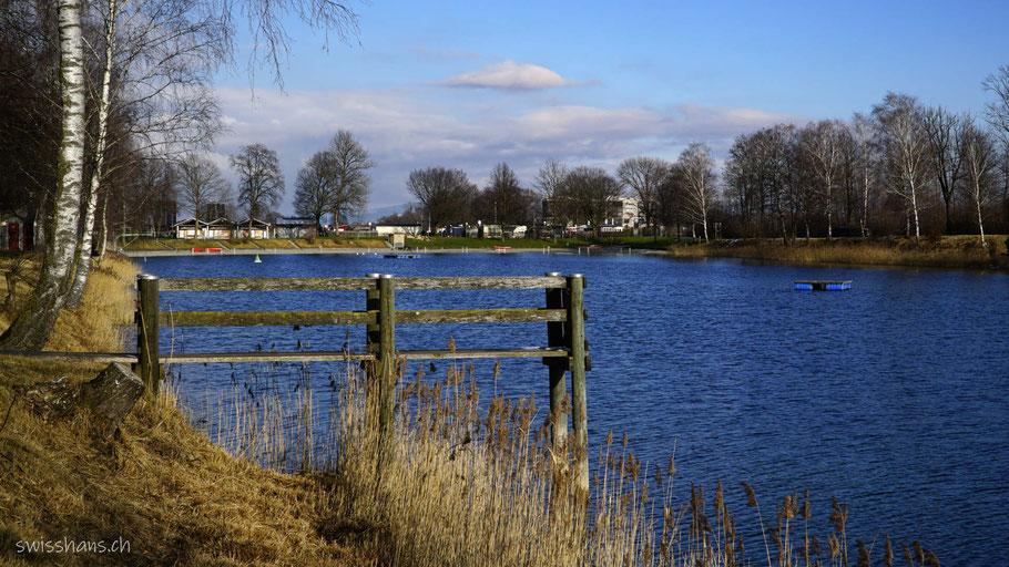Baggersee Kriessern, See mit Holzsteg und Birken