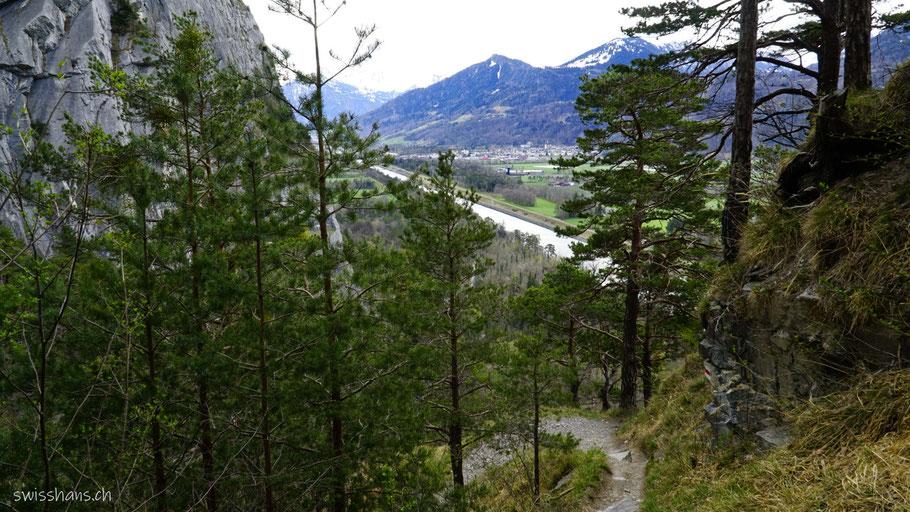 Wanderweg im Mozentobel mit Blick auf den Rhein