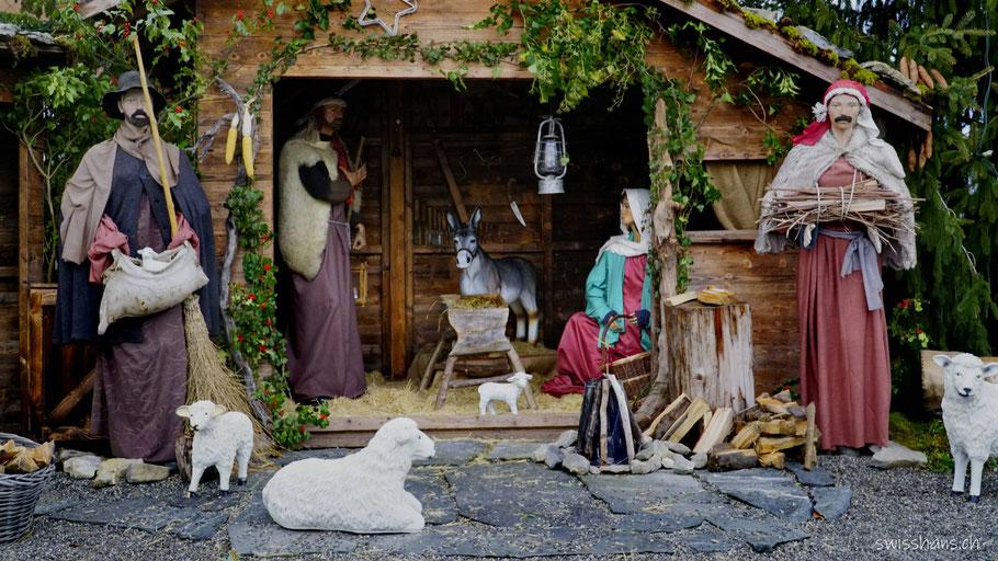 Weihnachtskrippe mit der Heiligen Familie und den Hirten in Büchel (Rüthi)