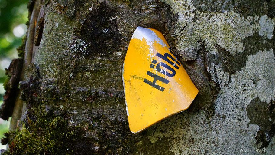 Baumstamm mit einem in den Baum eingewachsenen gelben Wanderweg-Wegweiser
