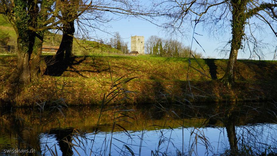 Morgenlicht am Rheintaler Binnenkanal und der Burgruine Schloss Blatten bei Oberriet