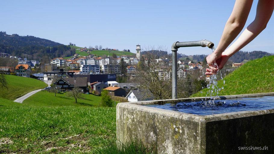 Brunnentrog mit dem Dorf Heiden im Hintergrund auf dem Witzweg