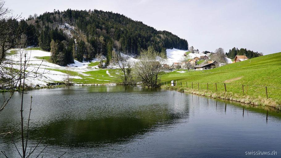Kleiner See mit der Siedlung Steingocht und Wald im Hintergrund