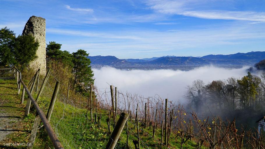 Landschaft mit bewaldeten Hügeln und Bergen im Hintergrund