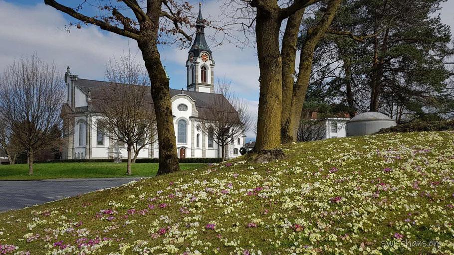 Kat. Kirche Widnau mit Blumenwiese im Vordergrund im Frühling