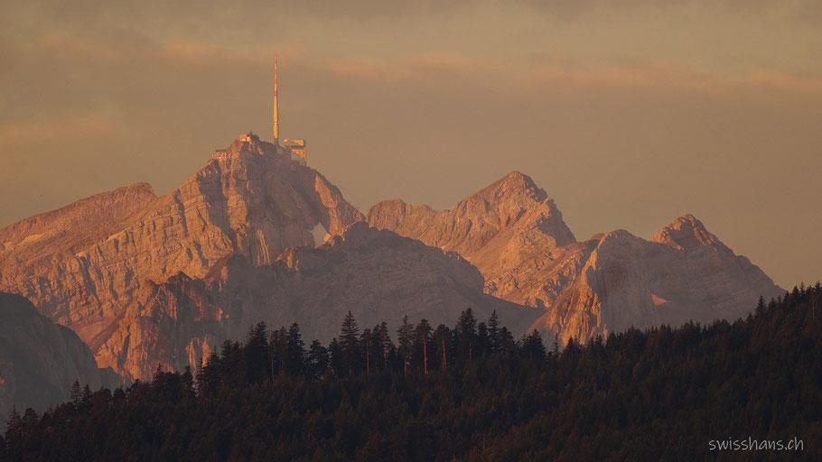 Säntis mit Bergkette und Wald im Morgenlicht