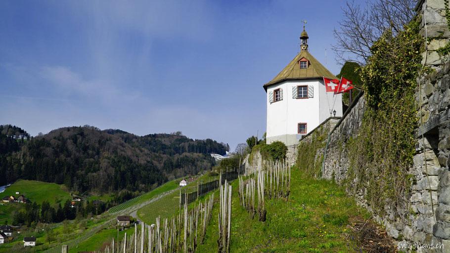 Gartenhaus der Burgruine Rosenberg bei Berneck im Rheintal mit Reben und Wald