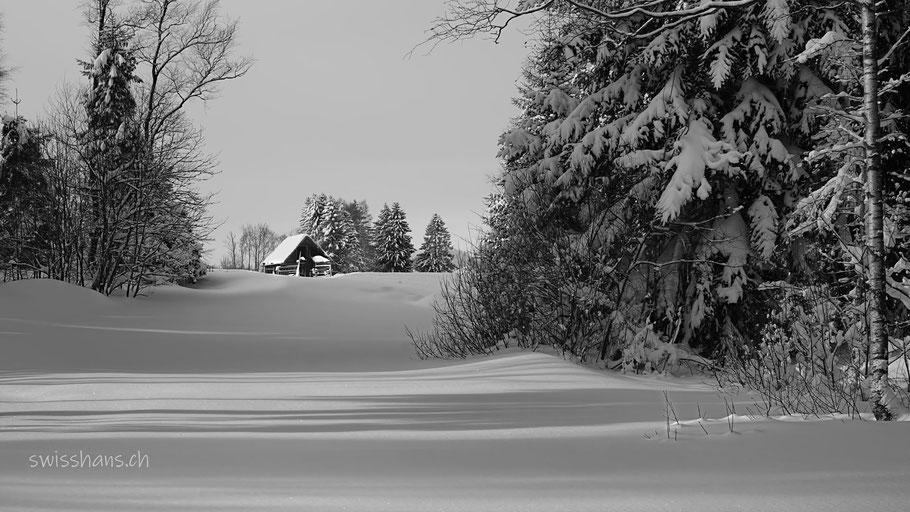 Winterlandschaft mit Hütte und Tannen im Rietli bei Gais