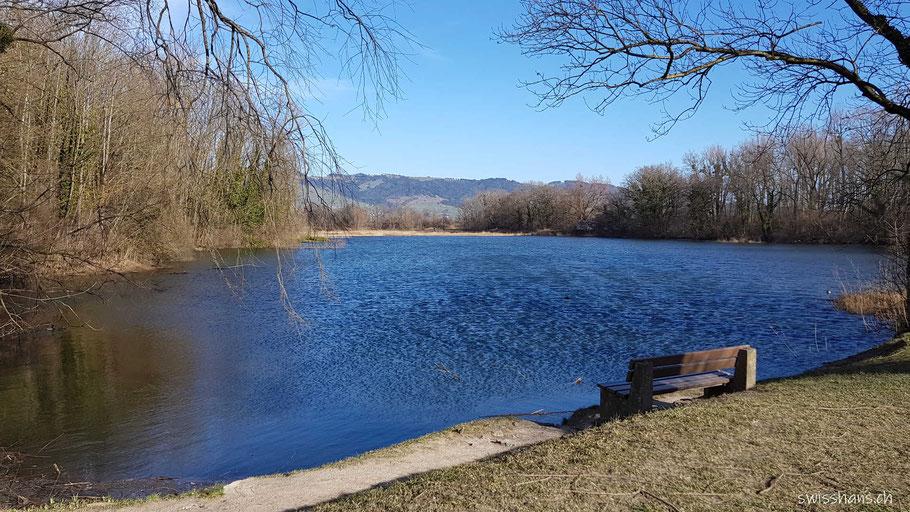 See im Naturschutzgebiet Wichenstein bei Oberriet mit Rastbank