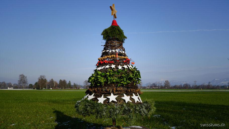 Christbaum des Adventswegs Rebstein - Balgach in der Wiese mit Himmel im Hintergrund