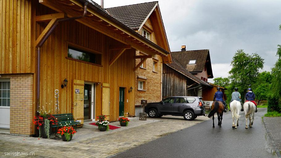 Coiffeursalon Mäser im Feld Marbach mit drei Pferden auf der Strasse