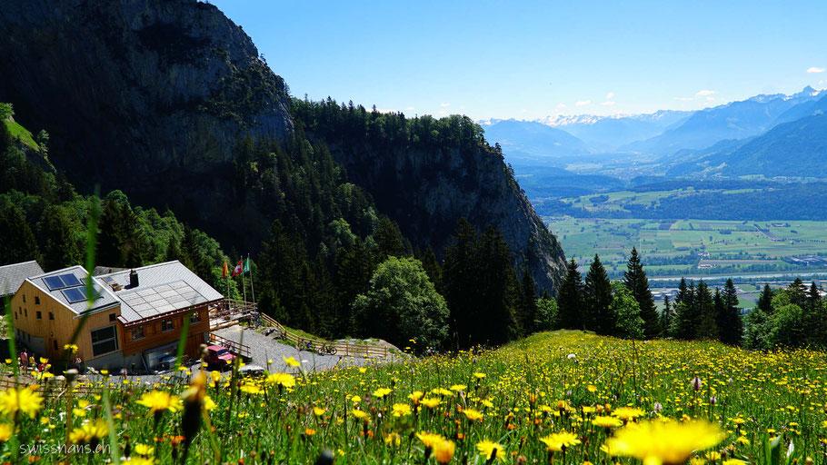 Bergrestaurant Alp Rohr mit Blumenwiese und Aussicht auf das Rheintal