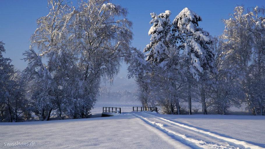 Windschutz im Winter mit Spuren im Schnee und einer Brücke