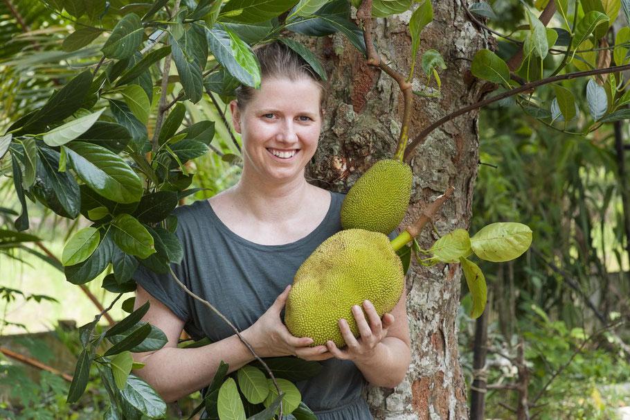 nachhaltigkeit-jackfruit